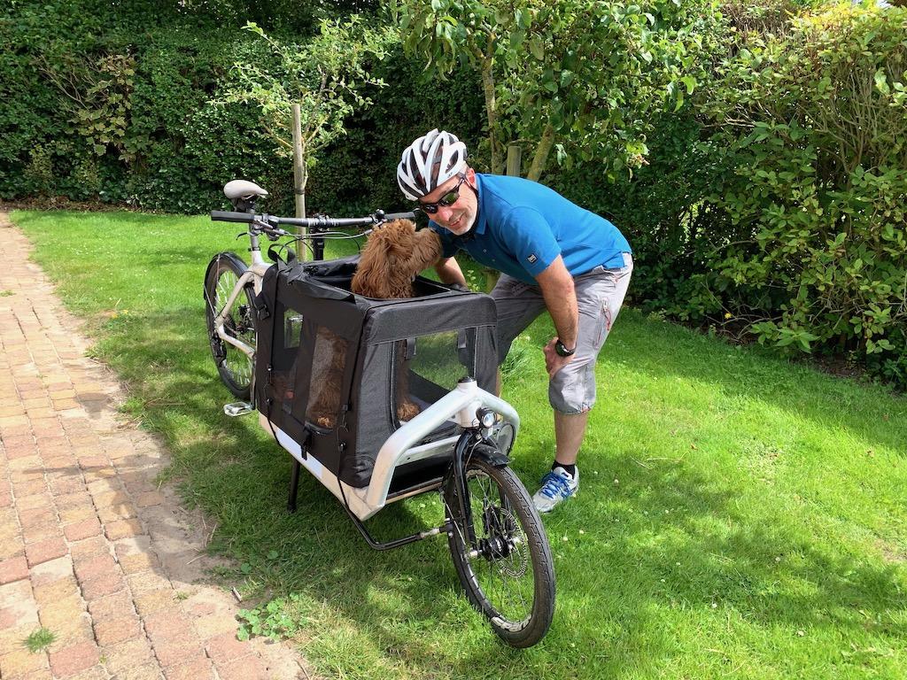 Bullitt Cargobike Hund Hundebox