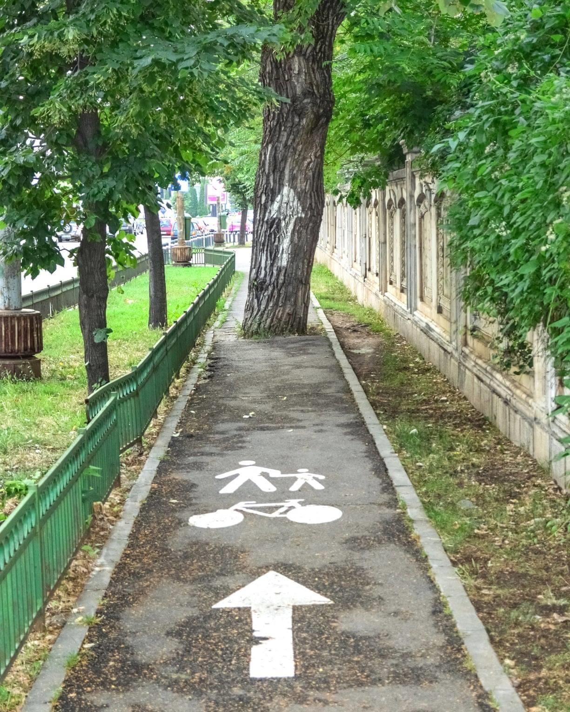 Cycling Fun Bike Path 3