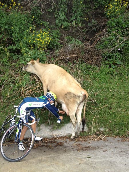Cycling Fun Fresh Milk