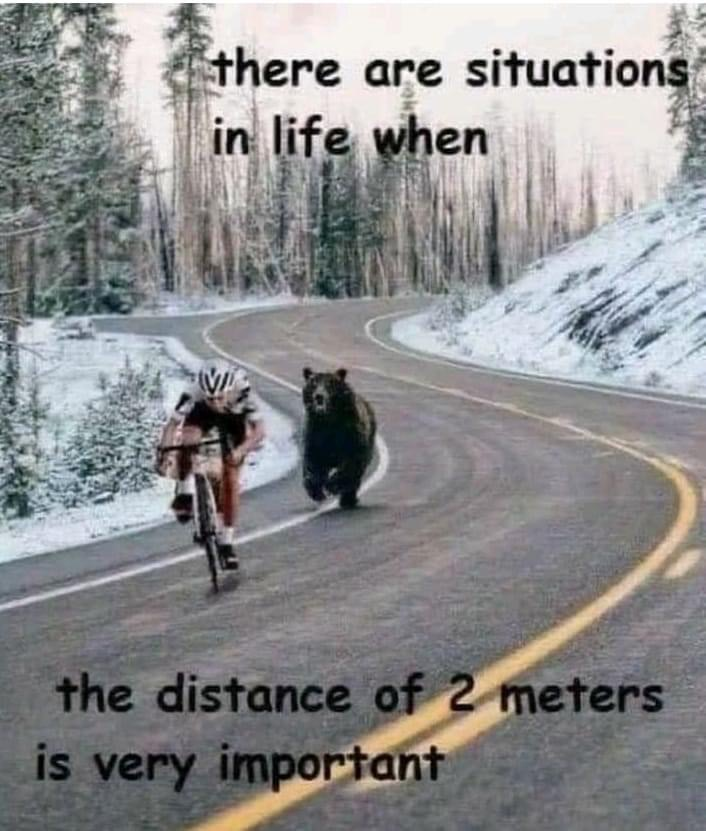 Cycling Fun - Bear chasing cyclist